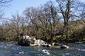 Islote do río Tea (16205128934).jpg