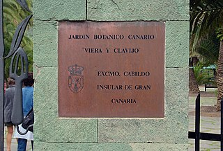 File jardin botanico canario wikimedia commons - Jardin botanico canario ...