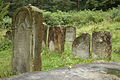 Jewish Cemetery Staryi Sambir 2008 05.jpg