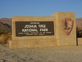 Image illustrative de l'article Parc national de Joshua Tree