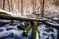 Külm jõgi.jpg