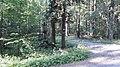 Kříž západně od Kladrub v lese Hůrka (Q80455692) 01.jpg