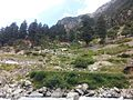 Kalam Mountains above River Swat - Kalaam, Swat, Pakistan.jpg