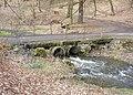 Kamenický potok, můstek pod hradem Zbořený Kostelec (01).jpg