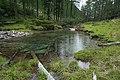 Kaponigtal im Nationalpark Hohe Tauern, Bezirk Spittal an der Drau, Kärnten.jpg