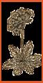 Keller Flower.png