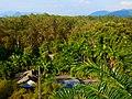 Khao Sok, 2014 December - panoramio (1).jpg