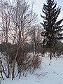 Khimselyshche, Cherkasy, Cherkas'ka oblast, Ukraine - panoramio (170).jpg