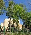 "Kindergarden ""Solnyshko"". July 2014. - Детский сад ""Солнышко"". Июль 2014. - panoramio.jpg"