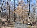 Kings Mountain National Military Park - South Carolina (8558886876) (2).jpg