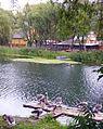 Kishma River Banks.jpg