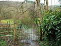 Kissing Gate - geograph.org.uk - 358269.jpg