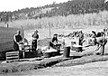 Kitchen police on duty at CCC (Civilian Conservation Corps) Camp in Little Horseshoe Park, Rocky Mountain National Park. (bbd566e3b85a416fa2829acff921a4bb).jpg