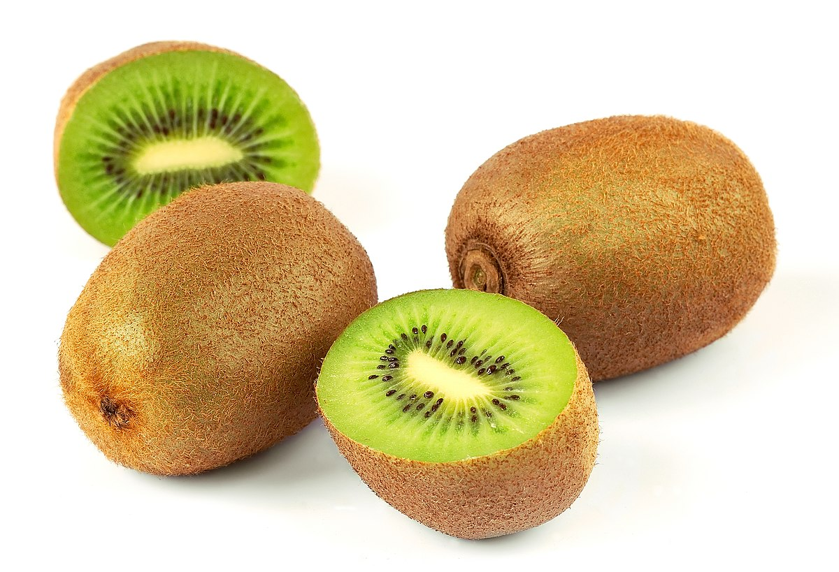 kiwifruit  simple english wikipedia, the free encyclopedia, Beautiful flower