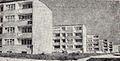 Klin Debiecki, Poznan, kolonia III (1961r.).jpg