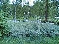 Koirapuisto,Kontula - panoramio.jpg