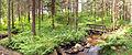 Koskikara nature trail.jpg