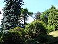 Kostelecký zámecký park (56).JPG