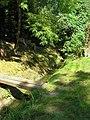 Kurvice Creek, Ronov nad Doubravou.jpg