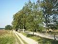 Lüneburger Heide - 043.jpg