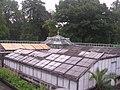 LIEGE Jardin Botanique (2).jpg