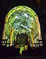 La Cathédrale Saint Maurice d'Angers, lors de la Balade du Roi René.jpg