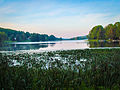 LakeChrisann-1.jpg