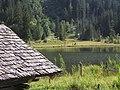 Lake (305750054).jpg