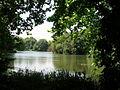 Lake in Battersea Park - geograph.org.uk - 1454123.jpg