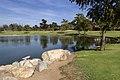 Lake in william mason park irvine california.jpg