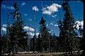 Landscape Views at Crater Lake National Park, Oregon (621af848-2761-448a-b2fd-5353947b36f0).jpg