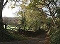 Lane above Boyton Mill - geograph.org.uk - 609651.jpg