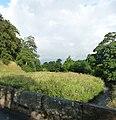 Laneshaw River in Laneshawbridge - panoramio.jpg