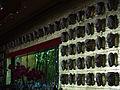 Las Vegas Wynn 26.jpg