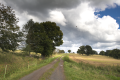 Lauterbach Frischborn Eisenbach Agricultural Roads Sheep Baronenweg S.png