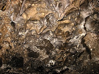 Lava Beds National Monument - Lavacicles on the ceiling of Mushpot Cave