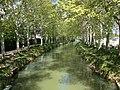 Le canal du midi près de Ramonville.jpeg