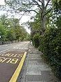 Leigham Court Road - geograph.org.uk - 432642.jpg