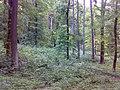 Les - panoramio (14).jpg
