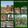 Les temples Cham de My Son (4400940512).jpg