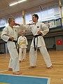Letní soutředění Okinawa Karate a Kobudo ČFOKK 2017 05.jpg