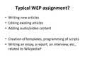 Lightning-talk-fancy-ideas-in-WEP-assignments.pdf