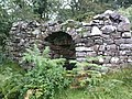 Lime Kiln in Castle Wood. - geograph.org.uk - 946274.jpg