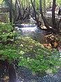 Livadia 321 00, Greece - panoramio (1).jpg
