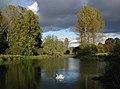 Londesborough Park - geograph.org.uk - 589094.jpg
