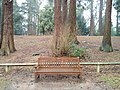 Long shot of the bench (OpenBenches 3932-1).jpg