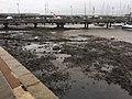 Low Tide Punta del Este 2.jpg