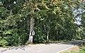 Luxembourg CR316 Eschdorf vers Esch-sur-Sure.jpg
