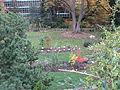 MSU 2014 Botanical Garden A.jpg