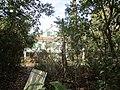 Magnolia Lane Plantation House from Bridge.JPG